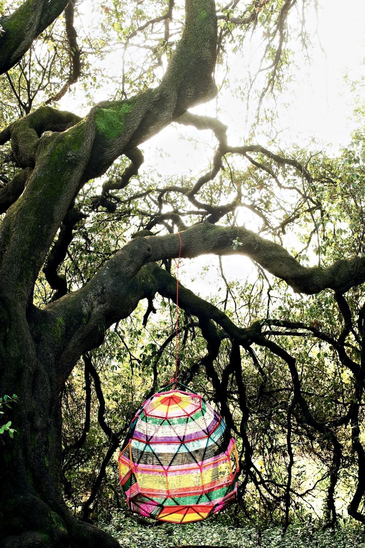Tropicalia Cocoon Schwingsessel Moroso