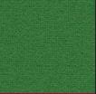 Tonus 4 Grass green