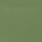 Grün glänzend 1321 C