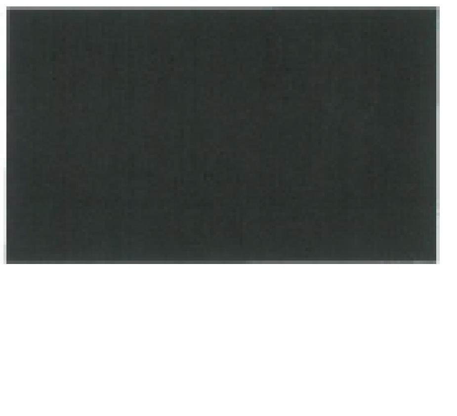 Buche schwarz