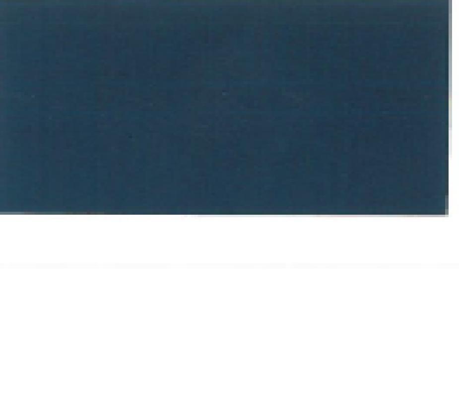 Buche blau