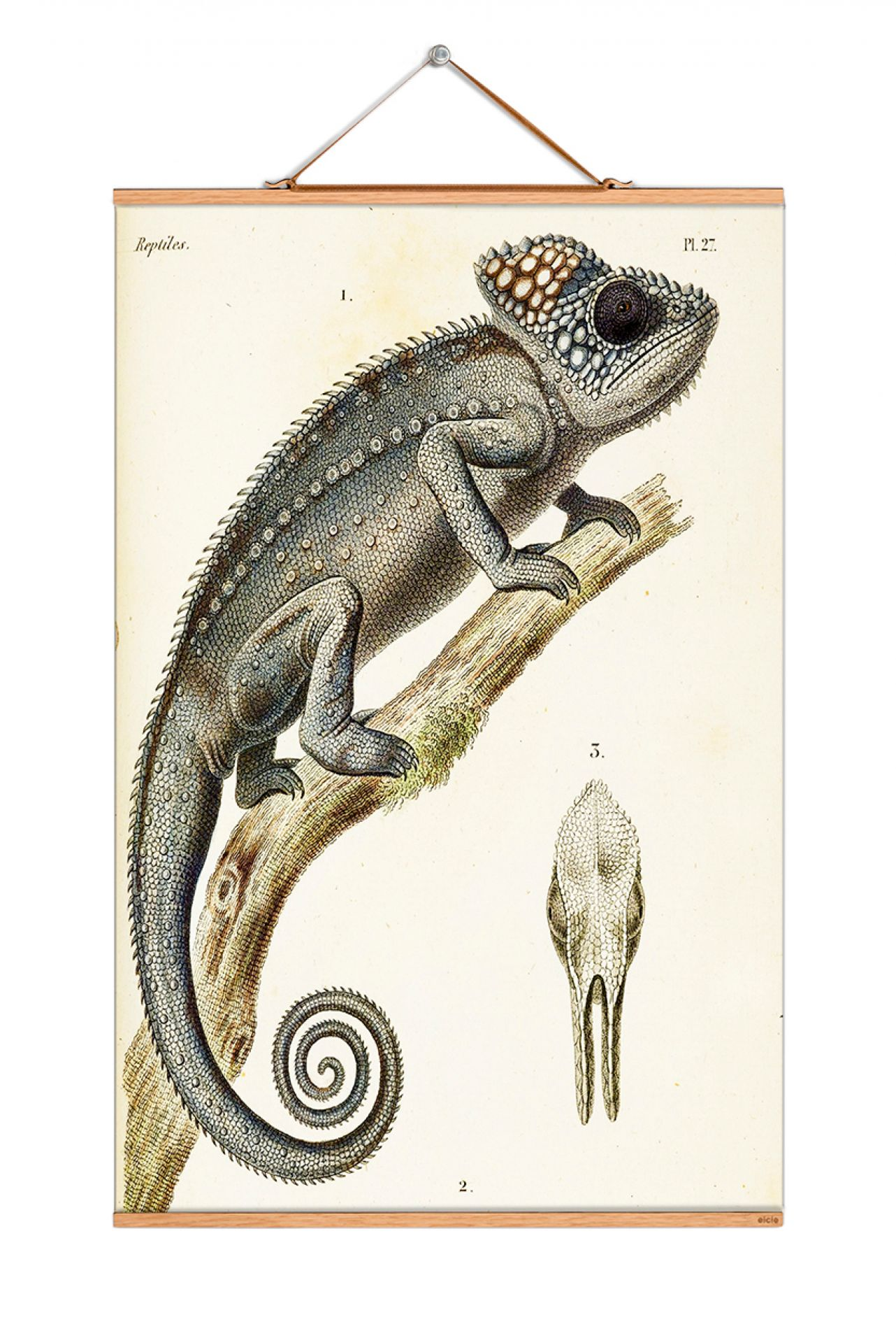 Animals Poster No 125 eicie