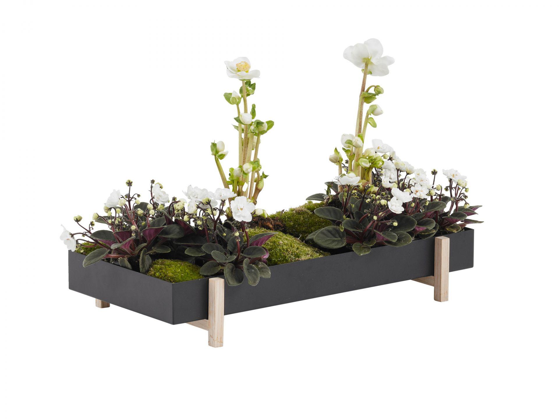Botanic Tray Blumenkasten Design House Stockholm