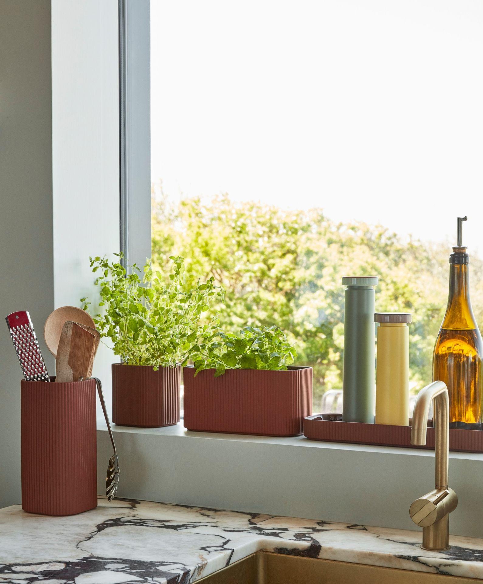 Facade Herb Pot Blumentopf Hay L
