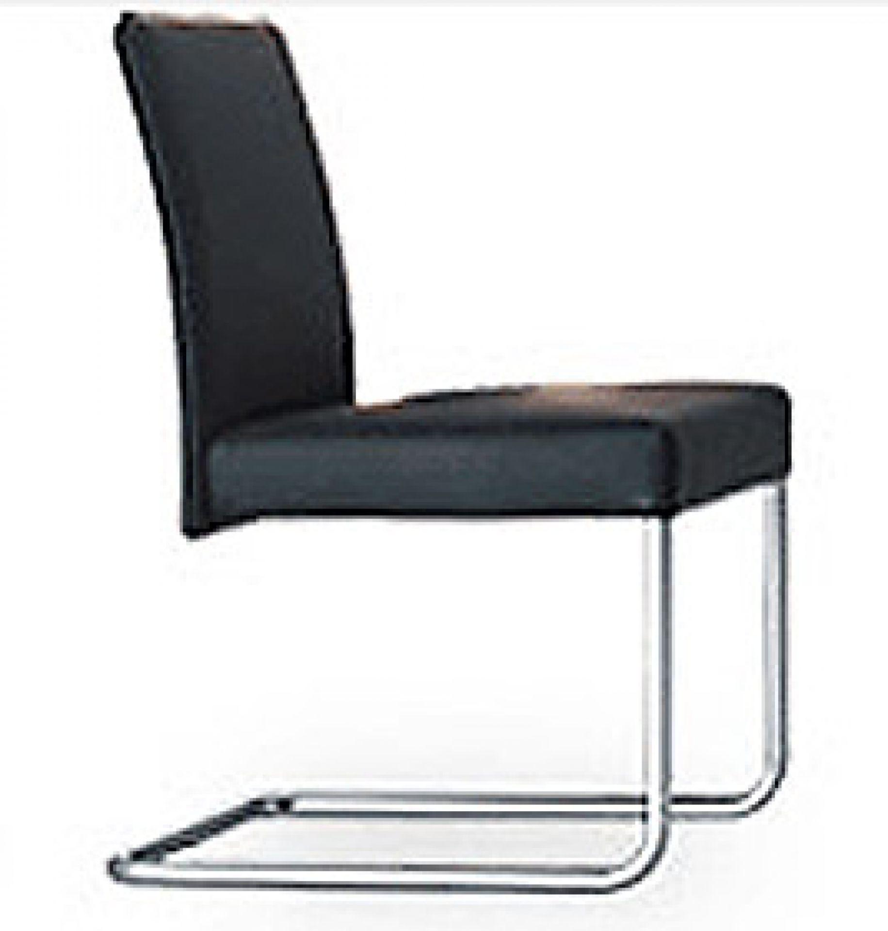 Jason 1401 Freischwinger Stuhl